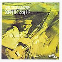 Jim Sullivan - Sitar Beat CD (album) cover