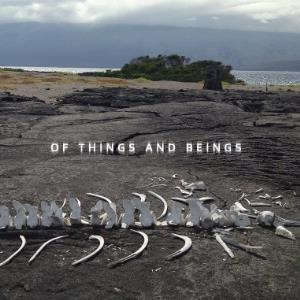 Of Things And Beings by LOST WORLD BAND album cover