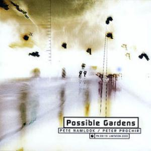 Pete Namlook Possible Gardens (with Peter Prochir) album cover