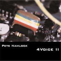 Pete Namlook 4Voice II album cover