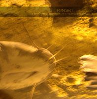 Kinski - I Didn't Mean To Interrupt Your Beautiful Moment CD (album) cover