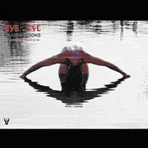 Eye 2 Eye by PARSONS BAND, ALAN album cover