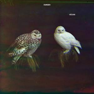 Häxan by DUNGEN album cover