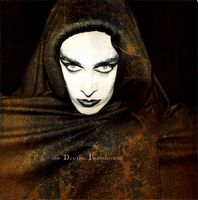 Diamanda Galas The Divine Punishment album cover
