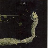 Maa�et by TENHI album cover