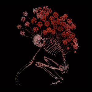 Folk Aesthetic 1996-2006 by TENHI album cover