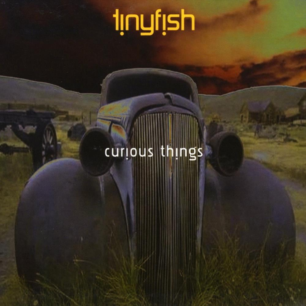Curious Things by TINYFISH album cover