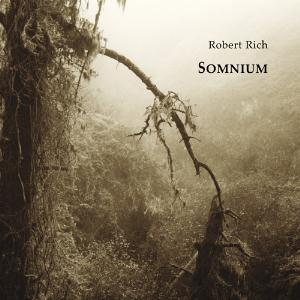 Somnium by RICH, ROBERT album cover
