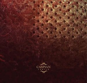 Tertia by CASPIAN album cover