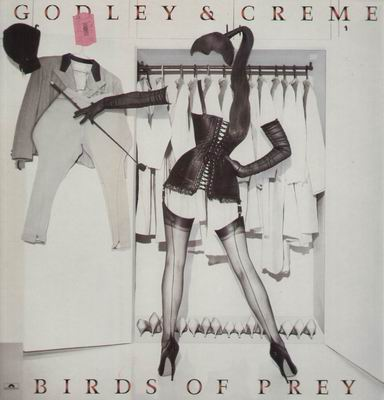 Birds Of Prey by GODLEY & CREME album cover
