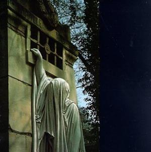 Dead Can Dance Within The Realm Of A Dying Sun album cover