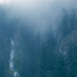 Wolves in the Throne Room - Diadem of 12 Stars CD (album) cover