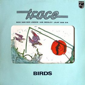 Trace Birds album cover