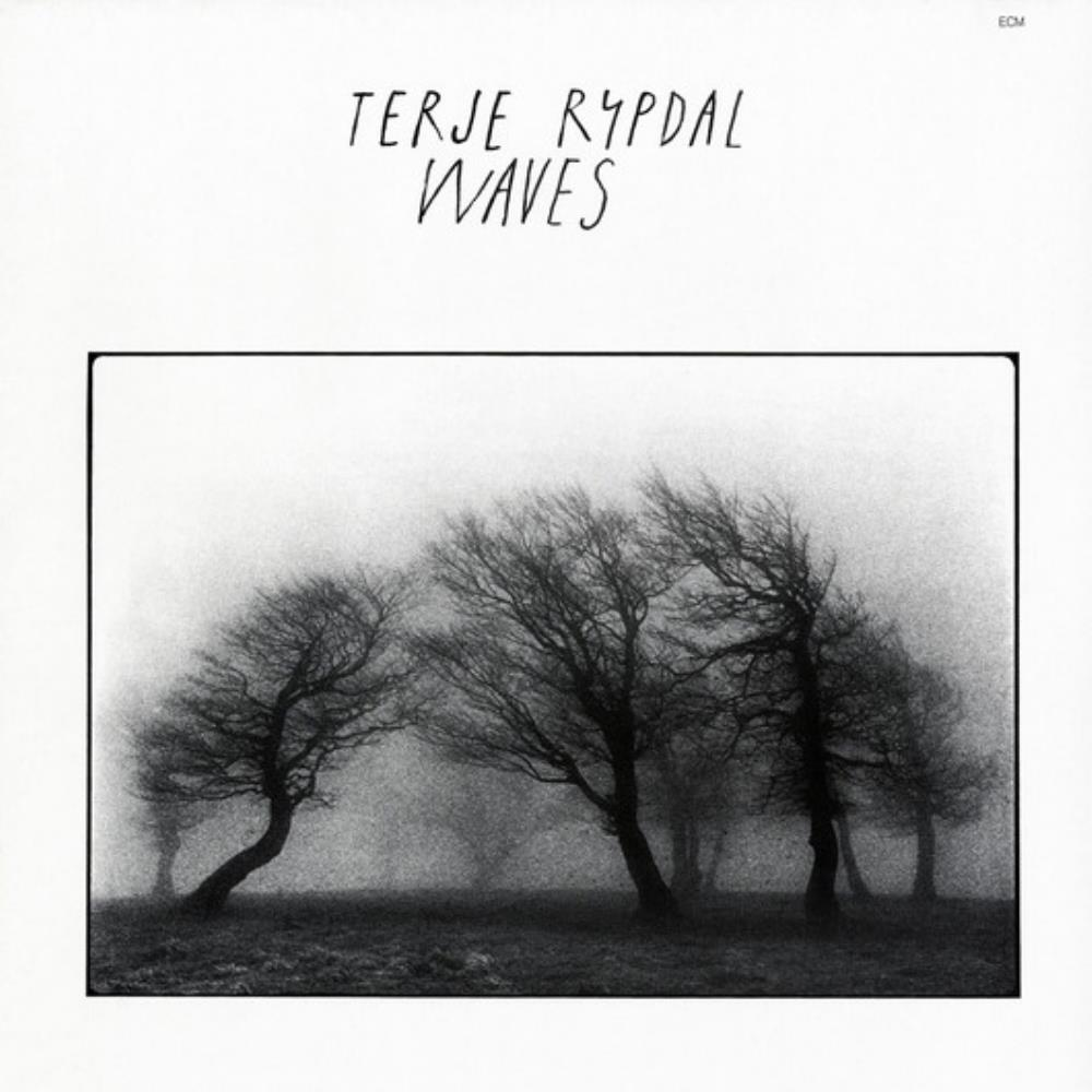 Waves by RYPDAL, TERJE album cover