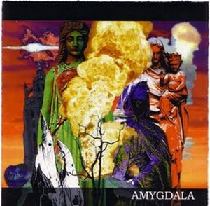 Amygdala - Amygdala CD (album) cover