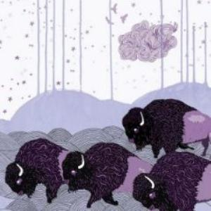 Plains Of The Purple Buffalo by SHELS album cover