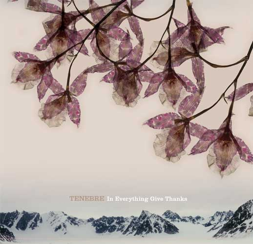 In Everything Give Thanks by TENEBRE album cover