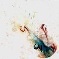 Abbandono Del Tempo E Delle Forme by J'ACCUSE..! album cover