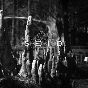 Magic Handshake by SEID album cover