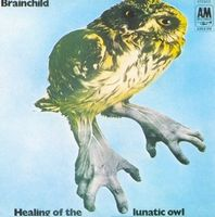 Brainchild Healing Of The Lunatic Owl album cover