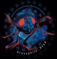 Drosophila Road by POLYTOXICOMANE PHILHARMONIE album cover
