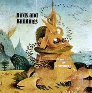 Birds And Buildings - Bantam to Behemoth CD (album) cover