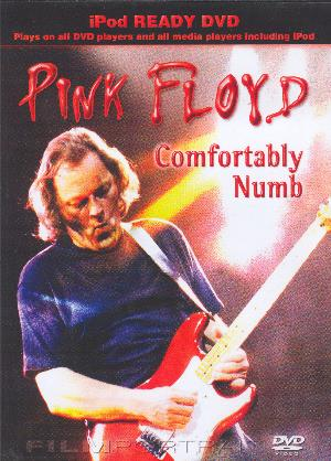 Pink Floyd Comfortably Numb album cover