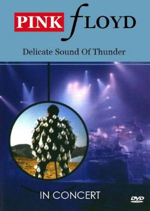 Pink Floyd In Concert - Delicate Sound Of Thunder album cover