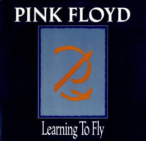 Pink Floyd Learning To Fly (promo single) album cover