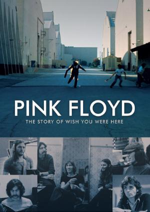 Pink Floyd The Story of Wish You Were Here album cover