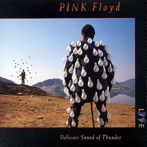 Pink Floyd Delicate Sound Of Thunder album cover