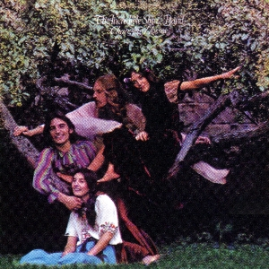 Changing Horses by INCREDIBLE STRING BAND, THE album cover