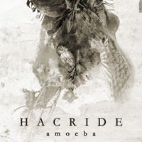Amoeba by HACRIDE album cover
