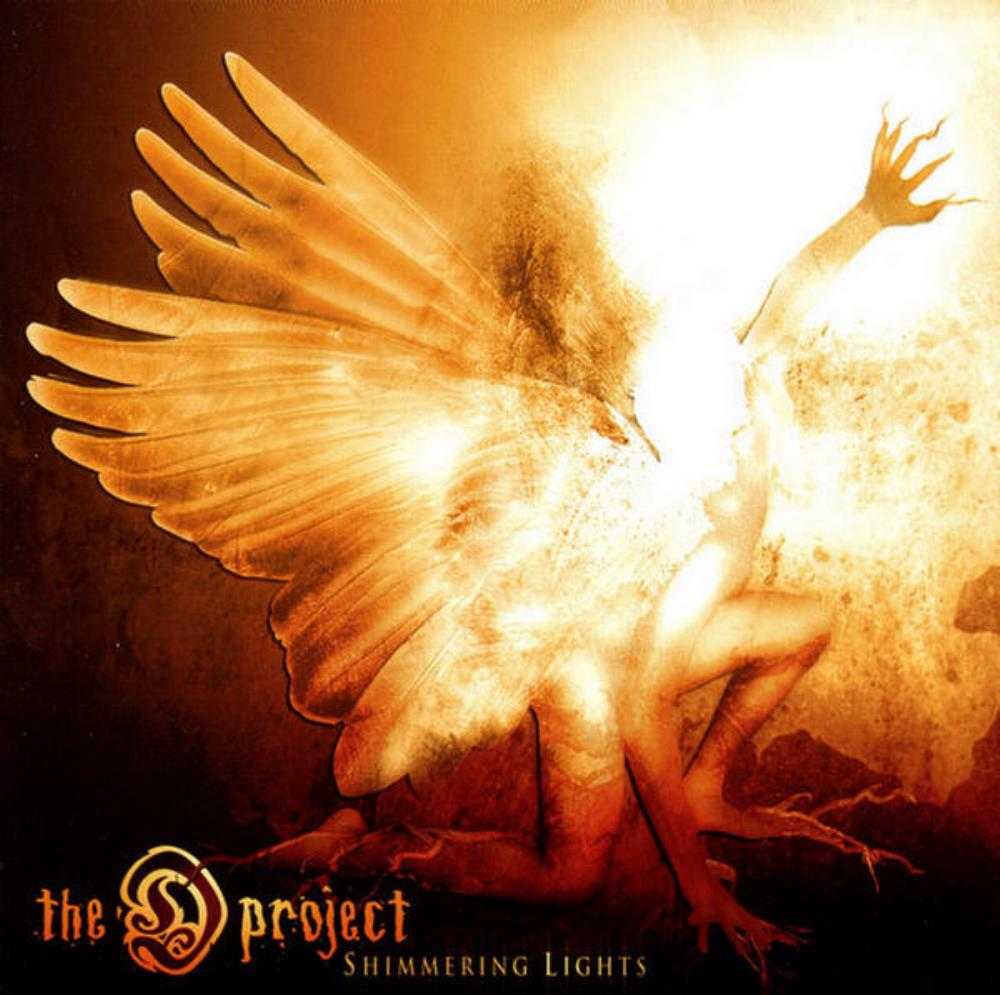 The D Project Shimmering Lights album cover