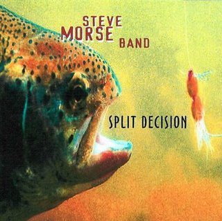 Split Decision  by MORSE BAND, STEVE  album cover