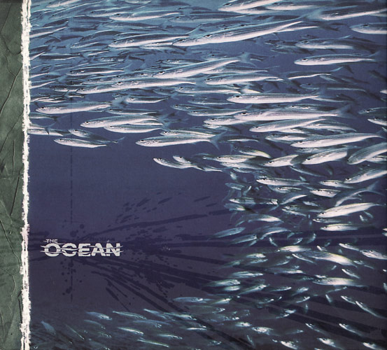 The Ocean Fluxion album cover