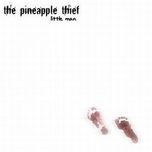 Pineapple Thief Little Man album cover
