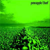 Pineapple Thief Sherbet Gods album cover
