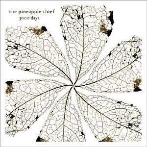 3000 Days by PINEAPPLE THIEF album cover