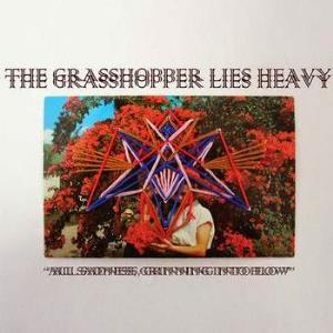 The Grasshopper Lies Heavy All Sadness, Grinning into Flow album cover