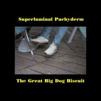The Great Big Dog Biscuit by SUPERLUMINAL PACHYDERM album cover