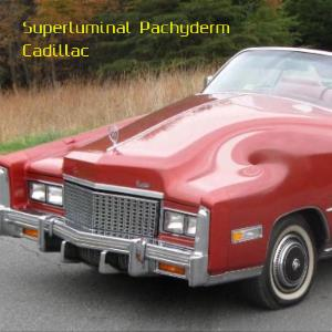 Cadillac by Superluminal Pachyderm album rcover