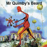 The Definite Unsolved Mysteries Of ... by MR QUIMBY'S BEARD album cover
