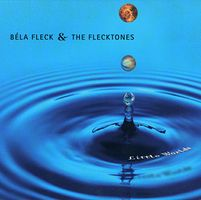 Little Worlds by FLECK AND THE FLECKTONES, BELA album cover