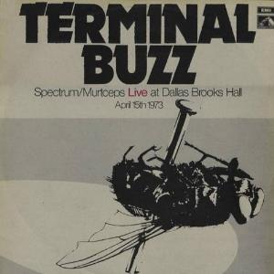 Terminal Buzz by SPECTRUM album cover
