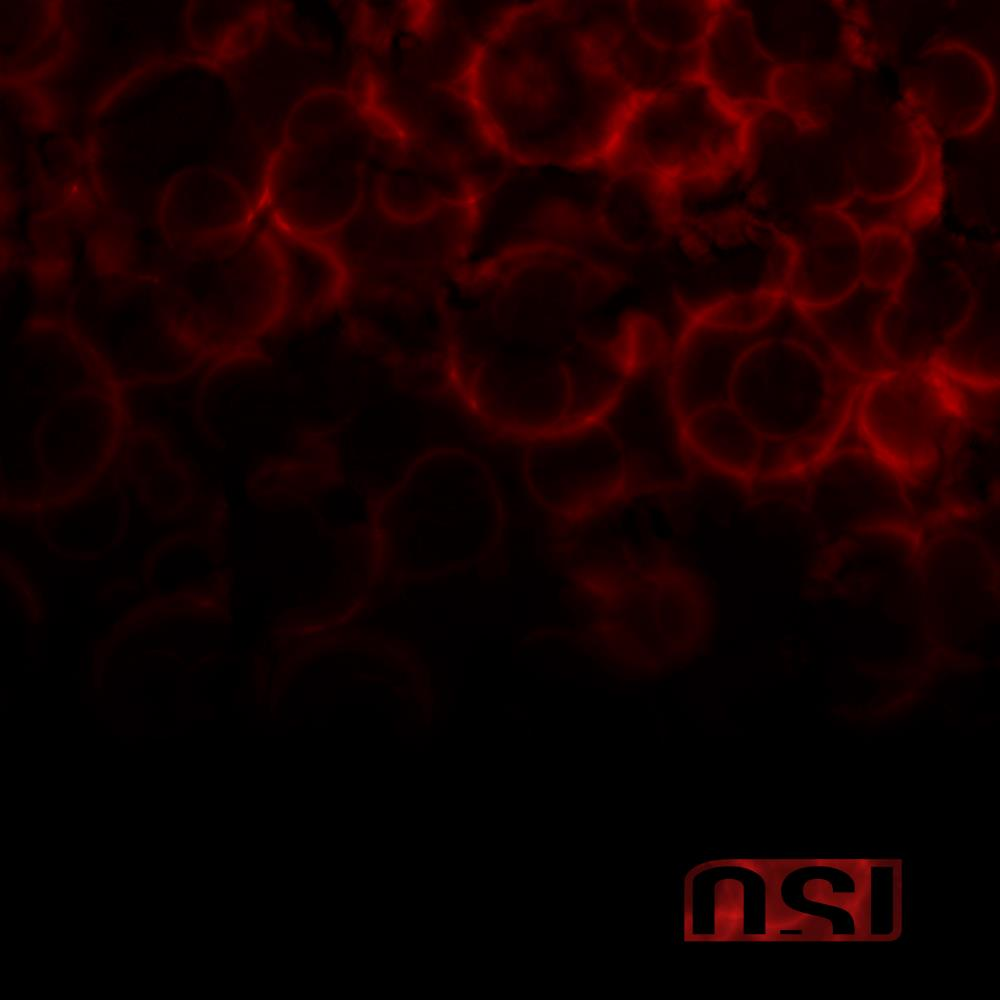 Blood by OSI album cover