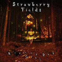 Strawberry Fields - Rivers Gone Dry CD (album) cover