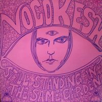 Still Standing In The Same Garden by VOCOKESH, THE album cover