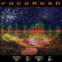 The Vocokesh Vibe album cover