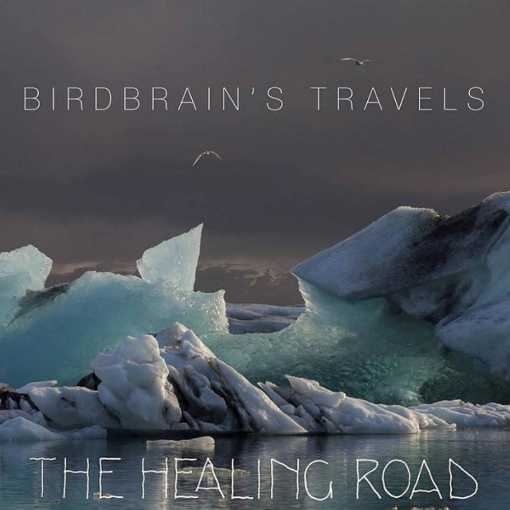 Birdbrain's Travels by HEALING ROAD, THE album cover